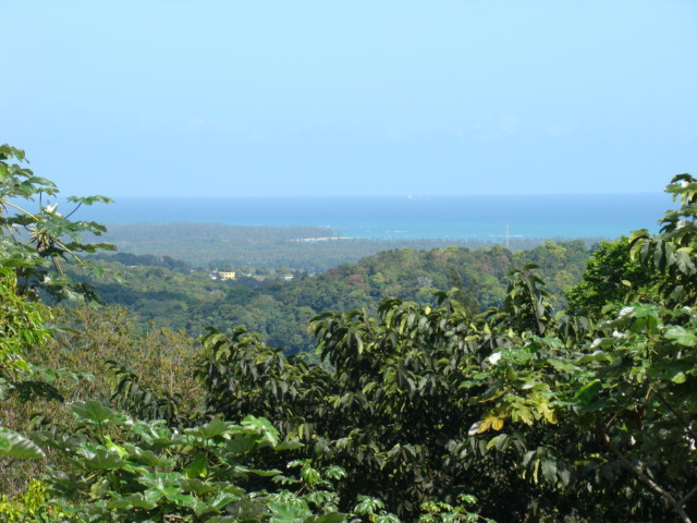 Beautiful view from great spot in Puerto Rico